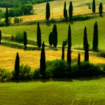 Tuscany Tour From Milan